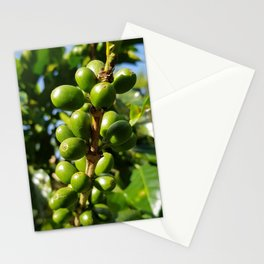 Costa Rican Coffee Stationery Cards