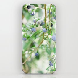 Blueberry Days iPhone Skin