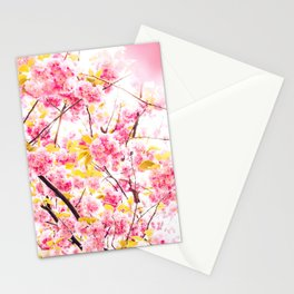 Beautiful photography pink cherry blossom flowers pattern Stationery Cards