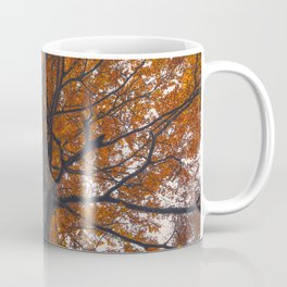 Fall tree, Autumn landscape Coffee Mug
