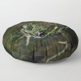 Frog Floating Floor Pillow