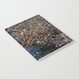 Brook Notebook