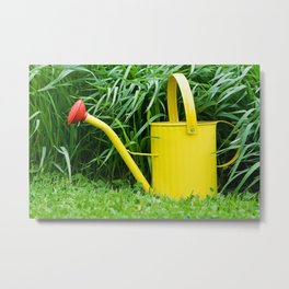 Watering Can 3 Metal Print