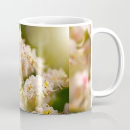 Aesculus chestnut tree blossoms Coffee Mug