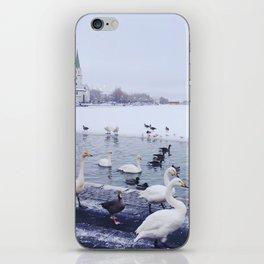 Reykjavik Duck Pond iPhone Skin