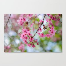It's time to Bloom! Canvas Print