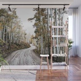 A Winding Autumn Road Wall Mural