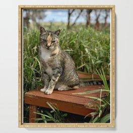 Lady Cuteness (Lanai Cat Sanctuary) Serving Tray