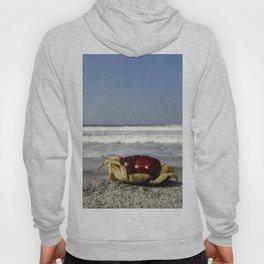 Crab On The Beach Hoody