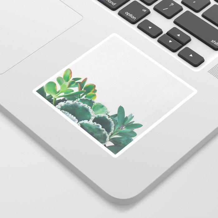 Plant Trio Sticker