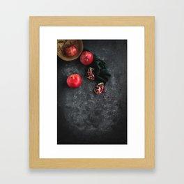 Pomegranate Study Framed Art Print