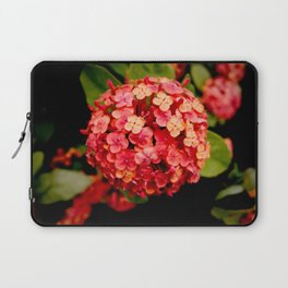 Maui Red Laptop Sleeve