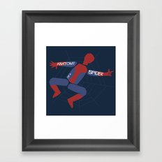 Anatomy of a Spider Framed Art Print