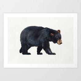 Watercolour Black Bear Drawing Art Print