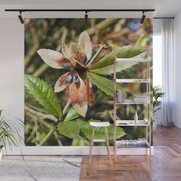 MAGIC COLOURS - SPRING  Wall Mural