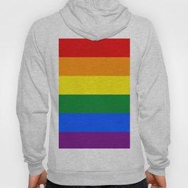 Pride rainbow flag Hoody