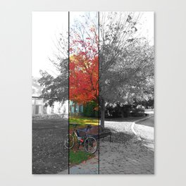 fall at arcadia. Canvas Print