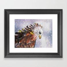 Sad  Hawk Framed Art Print