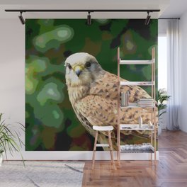 Falcon kestrel Wall Mural