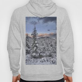 """Mountain light II"". Snowy forest at sunset Hoody"