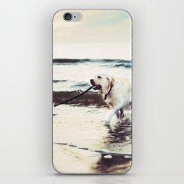 Joyful iPhone Skin