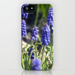 Spring Flowers Series 14 iPhone Case
