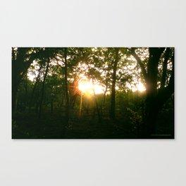 Sunset 04 Canvas Print