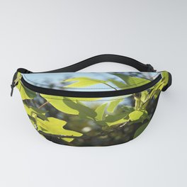 Fig tree branch Fanny Pack