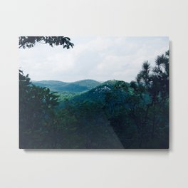 along the bear mountain summit trail - 7/28/18 Metal Print