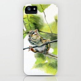 Balancing Act by Teresa Thompson iPhone Case