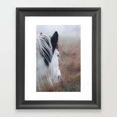 Profile of a Black and White Horse Framed Art Print