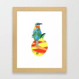 Bobo bird on a pineapple Framed Art Print