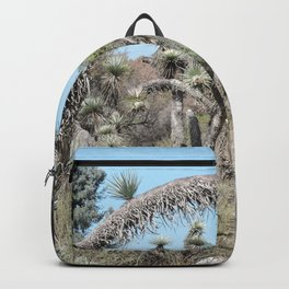 Joshua Tree Arch Backpack