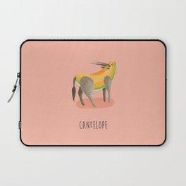 Cantelope Laptop Sleeve