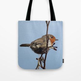 Beautiful robin Tote Bag