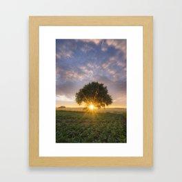 The tree of life - Belgium Framed Art Print