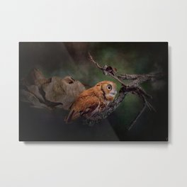 After the Acorns Fall Metal Print