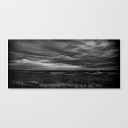 Savannah Storm Canvas Print