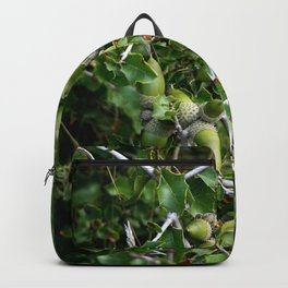 Autumn fresh acorns in the wild forest Backpack