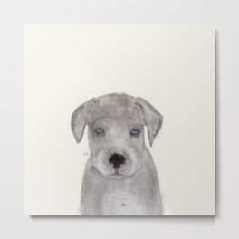 little great dane Metal Print
