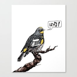 Yellow Rumped Warbler Canvas Print