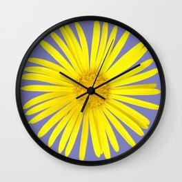 Daisy doronicum orientale Wall Clock