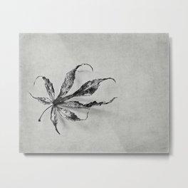 a leaf Metal Print