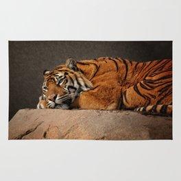 Resting Sumatran Tiger Rug