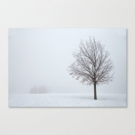 It's OK To Stand Alone Canvas Print
