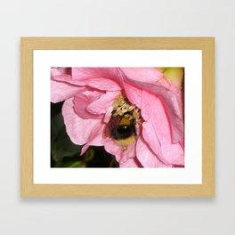 Fuzzy Buzzy Framed Art Print