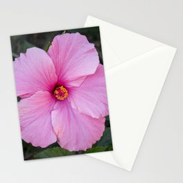 Single Pink Hibiscus Stationery Cards