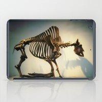 buffalo iPad Cases featuring Buffalo by Mandy Chesnut