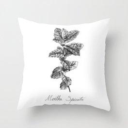 Spearmint Botanical Illustration Throw Pillow