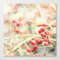 Beautiful Red Berries in the Sunshine Canvas Print